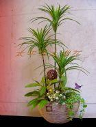 台南太平洋人造花~盆栽設計